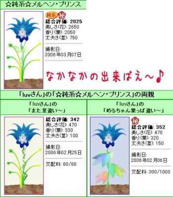3-7-plant2.jpg