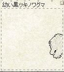kuma-3.jpg