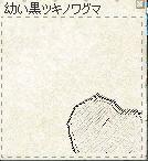 kuma-5.jpg