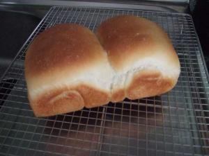 少量イースト食パン