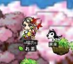Maple0163.jpg