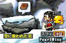雪に覆われた岩