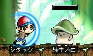 aru2_20080125210122.jpg