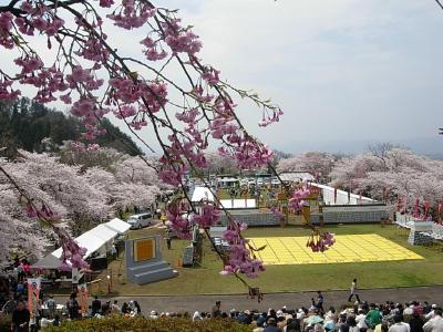 人間将棋桜