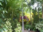 ジャングル3