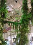 ジャングル14