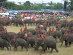 象祭り20