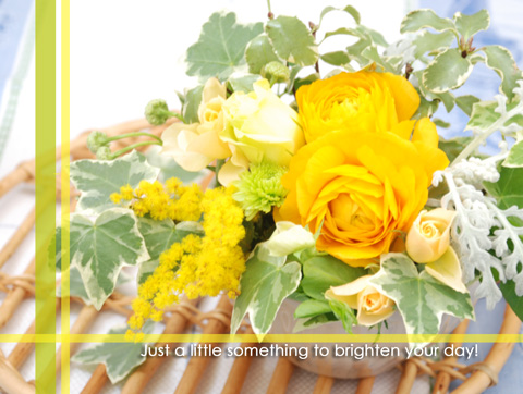 080226-yellow-flower-yoko.jpg