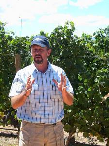 vinyard explanation3