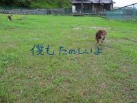 20070714234824.jpg