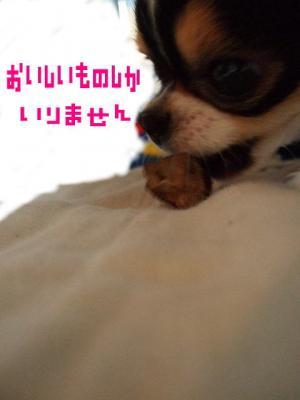 image070625.jpg