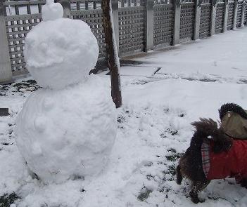 雪ダルマおしり