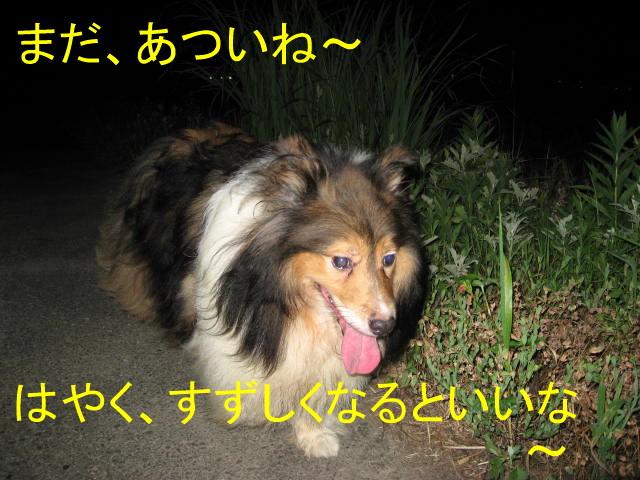 IMG_0670_1-2.jpg