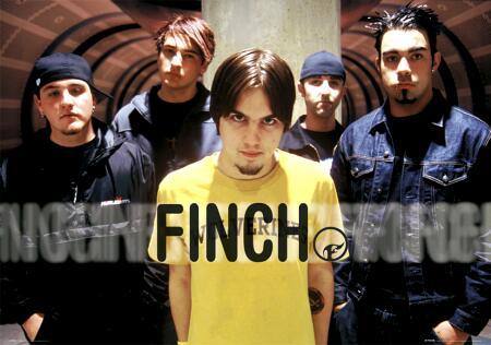 finch-tunnel-4900785.jpg
