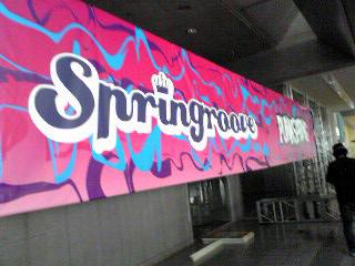 springroove08.jpg