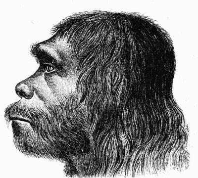 Neanderthaler_Fund.jpg