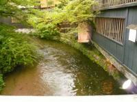 祇園の白川にかかっている新橋からの白川2