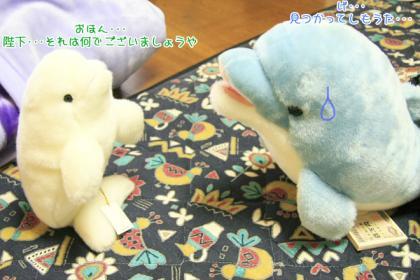 海豚王国プチオフ会-04