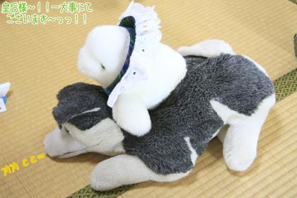 海豚王国プチオフ会-07