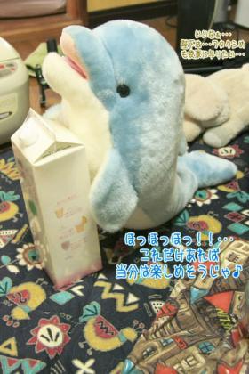 海豚王国プチオフ会-02