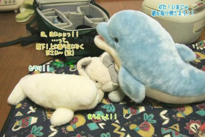 海豚王国プチオフ会-06
