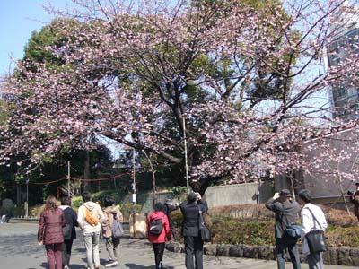 上野公園 (14).jpg