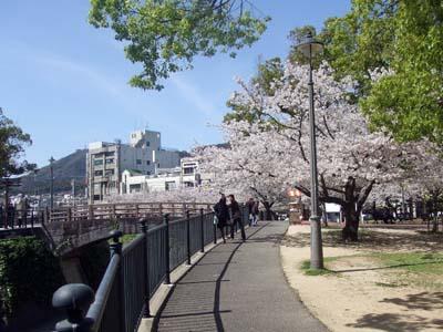 公園 (18).jpg