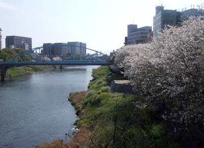 大甲・安政橋 (18).jpg