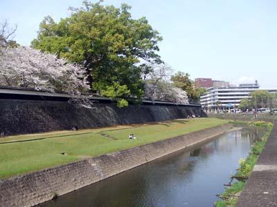 熊本城 (11).jpg