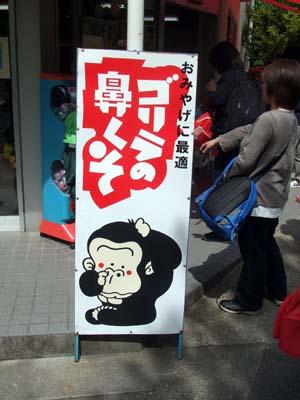 東山動植物園 (42).jpg