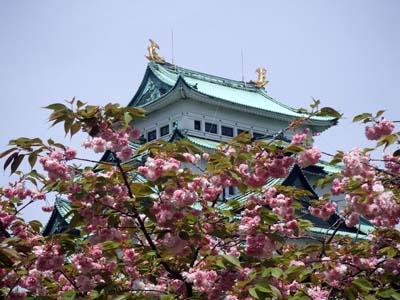 名古屋城 (25).jpg
