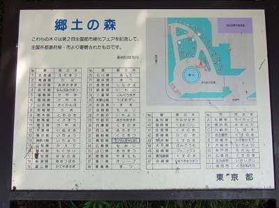 郷土の森 (14).jpg