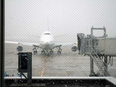 雪の福岡空港.jpg
