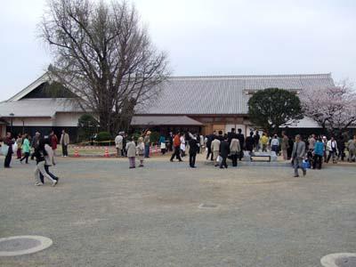 桜の城.jpg