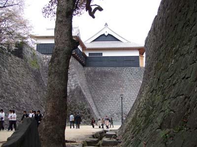 桜の熊本城 .jpg