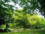福岡市動植物園1。