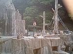 福岡市動植物園6。
