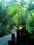 黒川温泉 旅館 山みず木。
