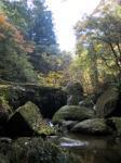 もう秋ですよ☆色づいた紅葉がキレイな一目八景。