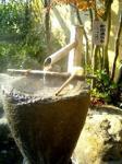 美奈宜の杜温泉 杜の湯で美肌湯を堪能♪