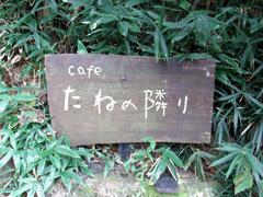 うきはのカフェ たねの隣りでカレーランチ♪