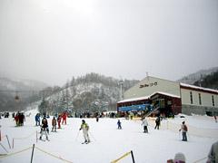 札幌国際スキー場でパウダースノー体験!