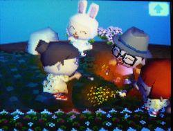 お祝い花火!