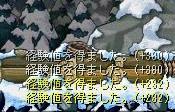 20060611134021.jpg