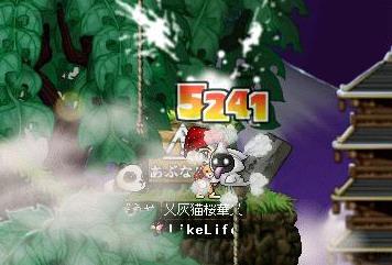 20060704131819.jpg
