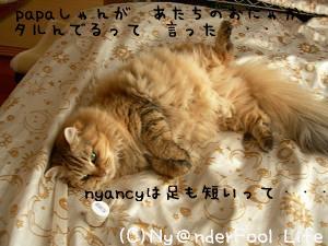 DSCN02890001.jpg
