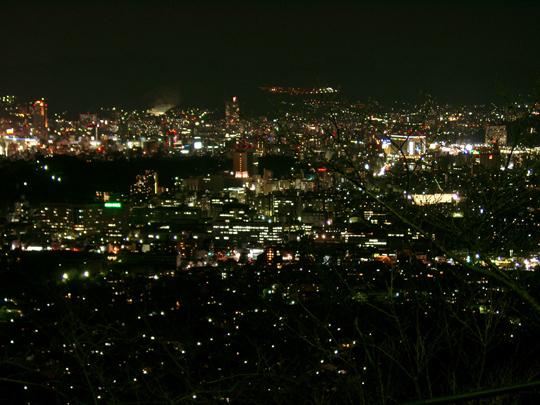 黄金山からの夜景 1