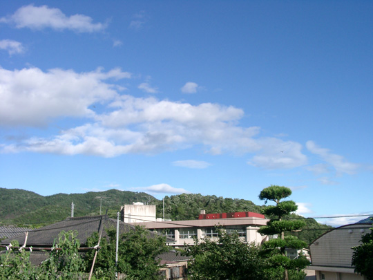 2007.7.15真由と洗車 3