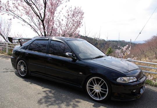 2008.3.28種松の桜 2