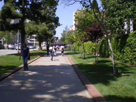 UCLAstreet